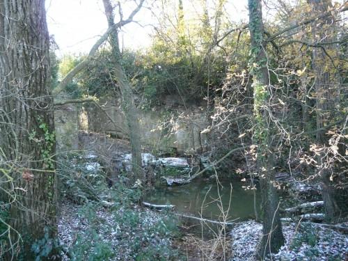 Ecluse du Canal du midi sous la végétation