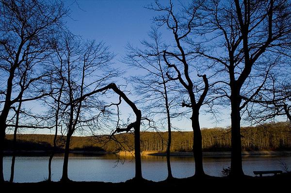 Lac du Lampy